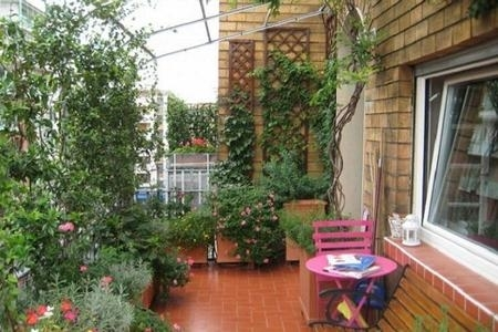 Emejing siepi da vaso per terrazzo images design trends - Piante sempreverdi per terrazzi ...