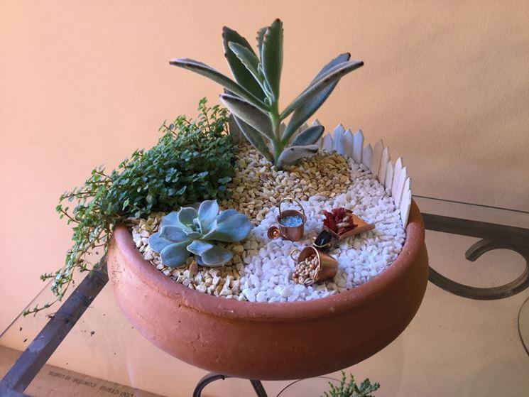 Coltivare piante grasse da esterno - Le Piante Grasse ...