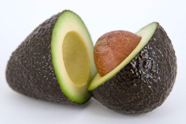 frutto