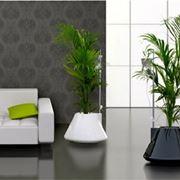 vasi da arredamento per la casa