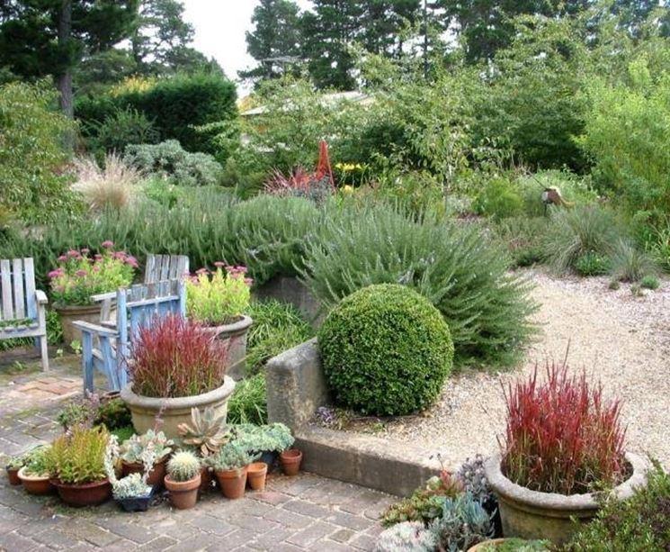 Un angolo di giardino arredato con piante in vaso