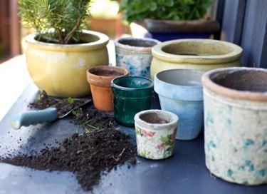Possibili vasi per piante