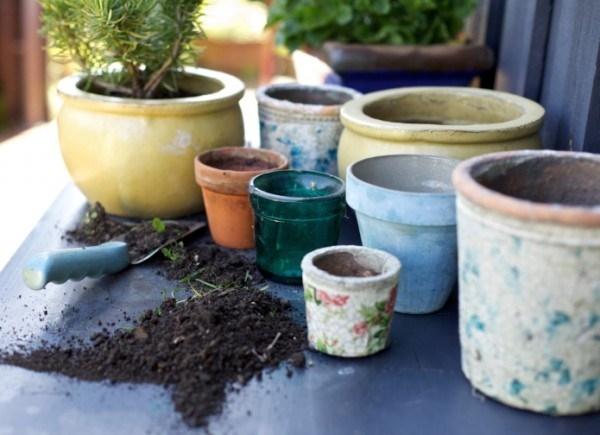 Perch scegliere vasi grandi scelta dei vasi i vasi grandi for Vasi per semina