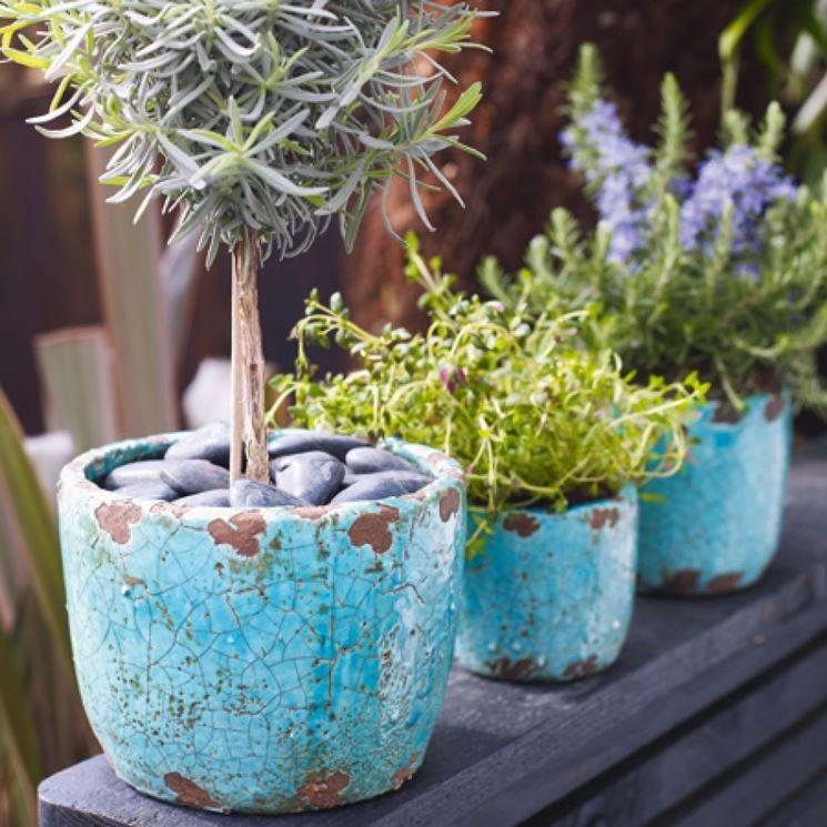 Prezzi dei vasi arredamento scelta dei vasi arredare for Vasi in cotto prezzi