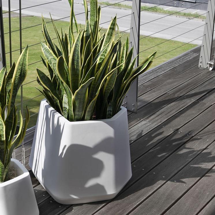 vasi grandi per piante idee per il design della casa
